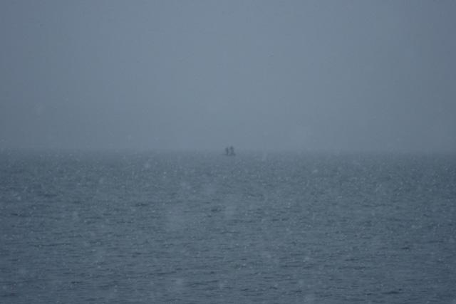 Озеро Сенеж, 2010 год.