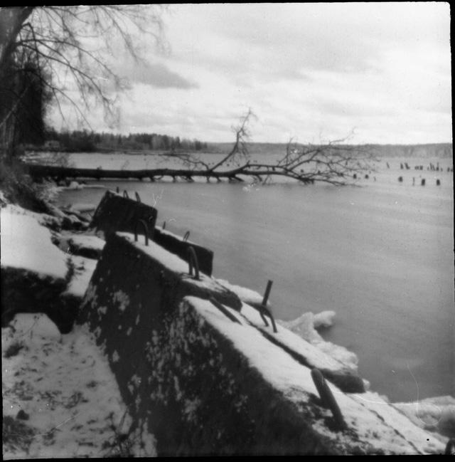 Озеро Сенеж. 2011 год. Снимок сделан на самодельный пинхол из Любителя 166