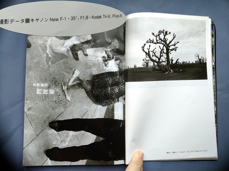 yaponski_fotojurnal_00021