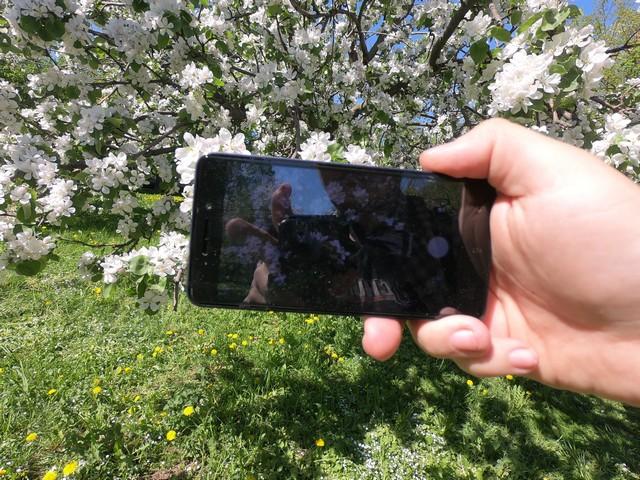 Xiaomi Redmi 4a во время цветения яблонь на ВДНХ