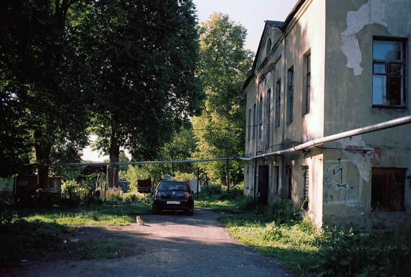 маленькая маленькая собака на фоне сельского пейзажа. рядом стоит машина. в правой части двухэтажный старый дом