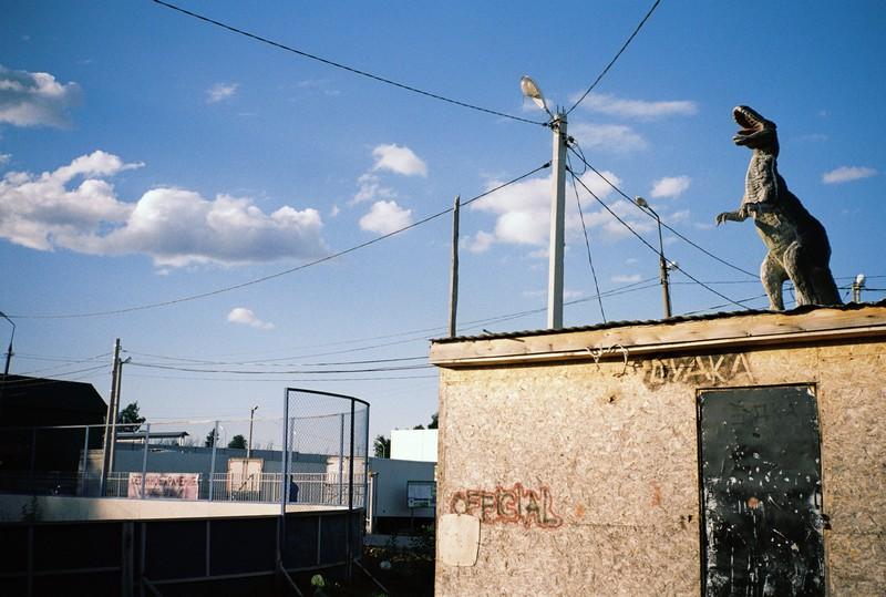 динозавр установлен на крыше фанерной бытовки деревни Кривцово. Слева стадион, на заднем плане голубое небо и провода