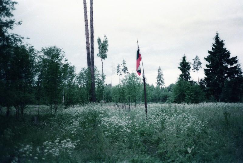 Флаг России на деревянном шесте установлен в диком лесу близ Радищево