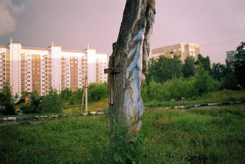 Деревянный крест с изображением Христа на высохшем дереве в Тимоново