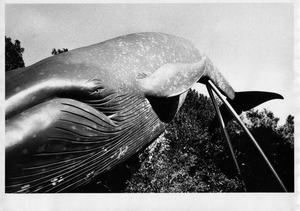 Скульптура голубого кита в натуральную величину