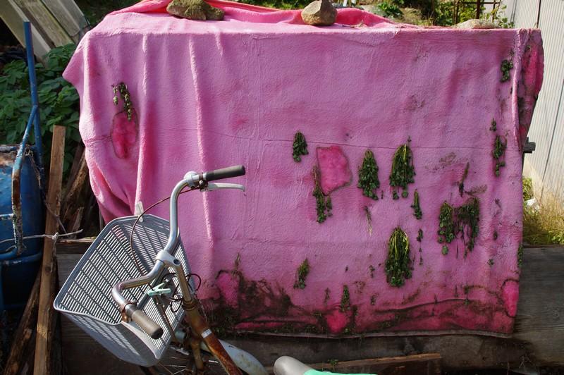 Старое покрывало и ржавый велосипед. Окишима