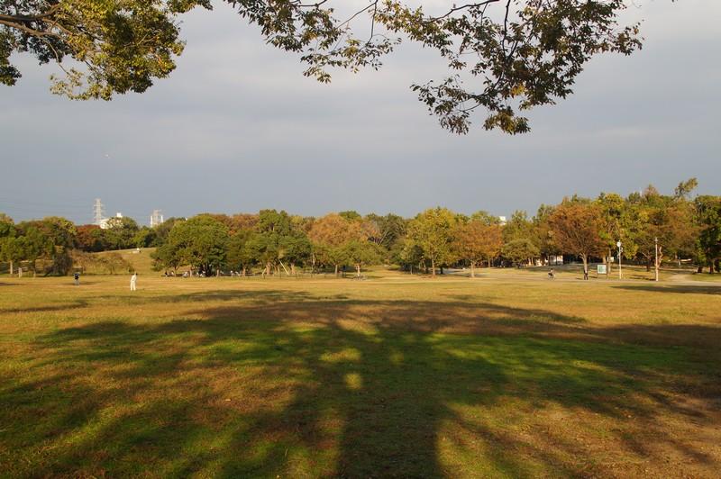 Центральный парк города Сакаи, Осака