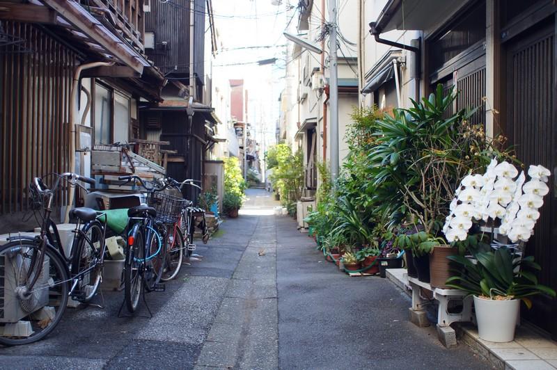 Современный типовой дворик улиц района Кото