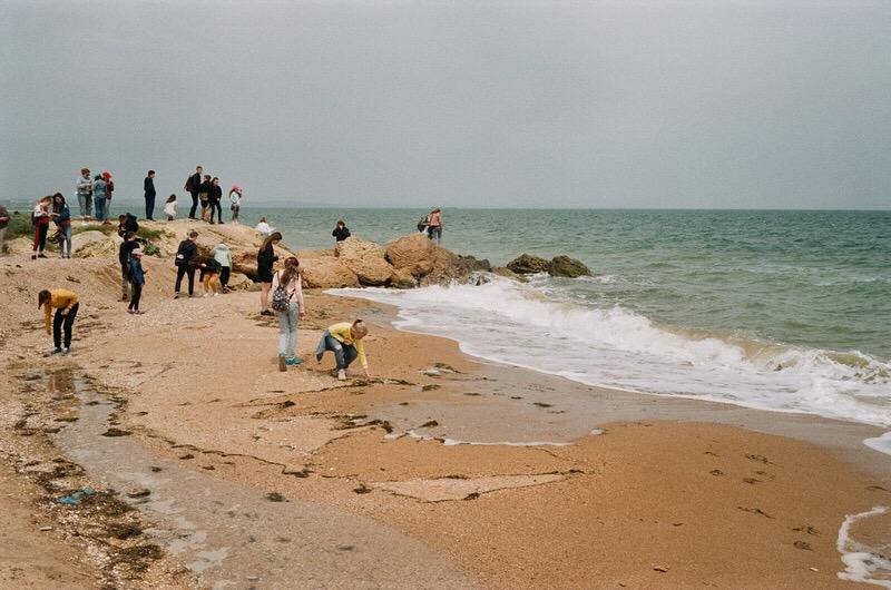 Дети из туристического автобуса в поисках ракушек на берегу Чёрного моря